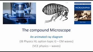 The compound microscope - how to draw ray diagrams