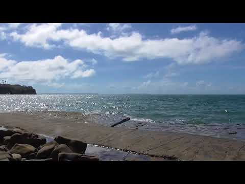 The Ocean   by Nicola Redmond
