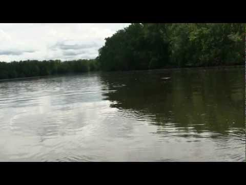 Topwater Striped Bass Fishing on the Connecticut River