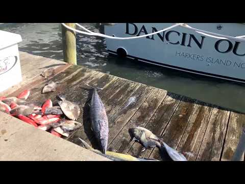 Offshore Charter Fishing Boats in Morehead City NC