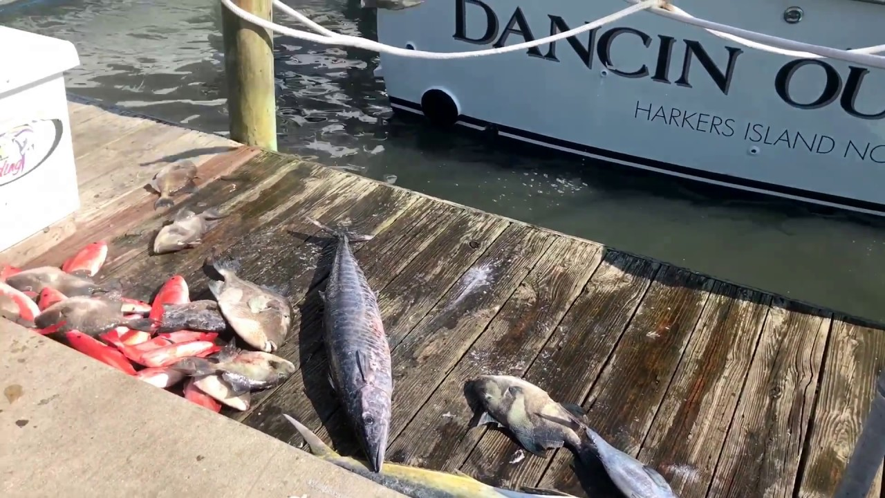 Offshore charter fishing boats in morehead city nc youtube for Fishing charters morehead city nc