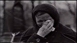 Трогает до слез...  Мы помним что была война... Стихи. 9 мая
