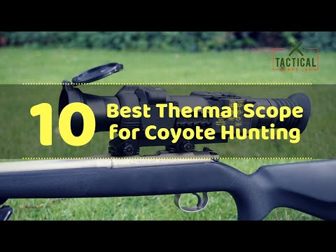 10 Best Thermal Scope For Coyote Hunting - Tactical Gears Lab 2020