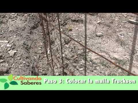 Cultivando saberes 18 cr a de cachamas funnycat tv for Tanques para cachamas
