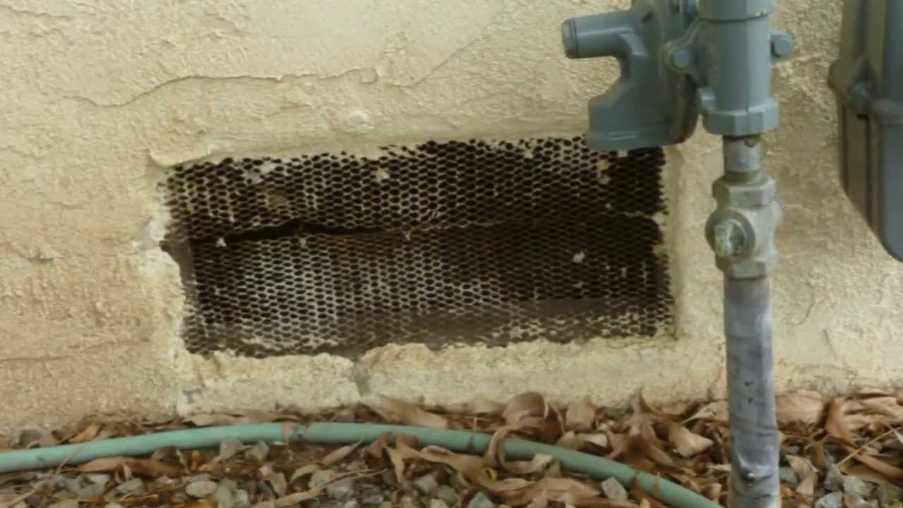 Replace Foundation Vent Screens with Correct Materials Home
