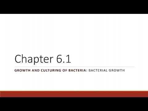 BIO 275 Chapter 06.01 Bacterial Growth