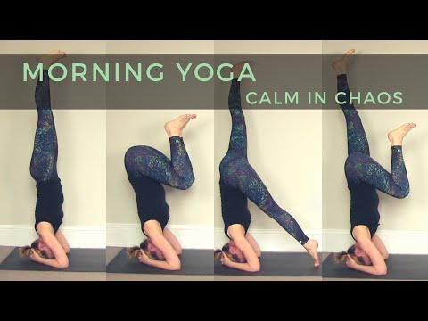 40 min Morning Yoga // Calm In Chaos 🙃😇 Total Body Flow, Headstand step by step // SITM #9