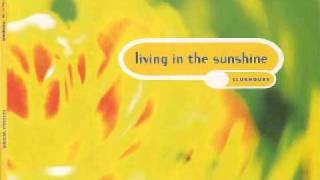 Clubhouse - Living In The Sunshine (R.A.F. Zone Mix) (1994)