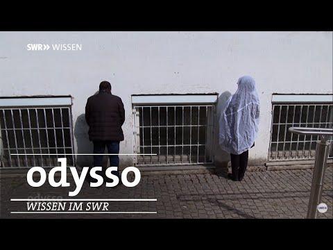 Experiment der Universität Hohenheim | Odysso – Wissen im SWR