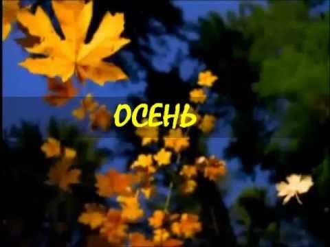 Волейбол россия польша видео смотреть