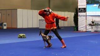 """Танцы с собаками """"Евразия - 2015"""". Dog Dancing. Canine Freestyle."""