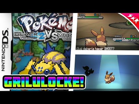 pokemon nds rom download hack