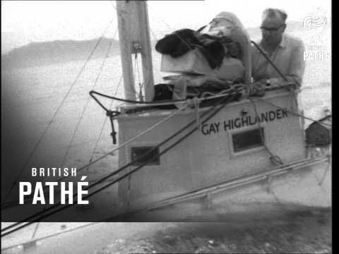 odonnel gay cruise