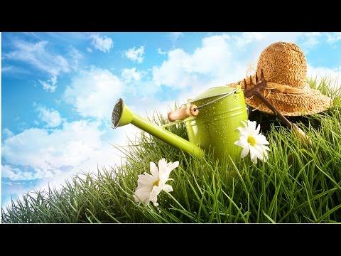 Clique e veja o vídeo Treinamento de Jardineiro - Ferramentas para Jardinagem
