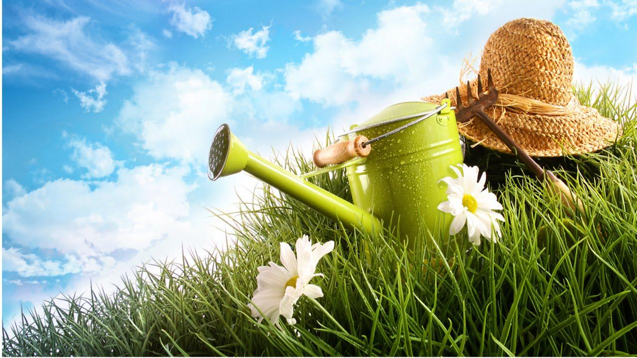 treinamento de jardineiro ferramentas para jardinagem. Black Bedroom Furniture Sets. Home Design Ideas
