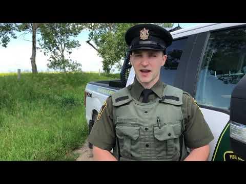 Wildlife In Urban Areas – Alberta Fish And Wildlife Enforcement