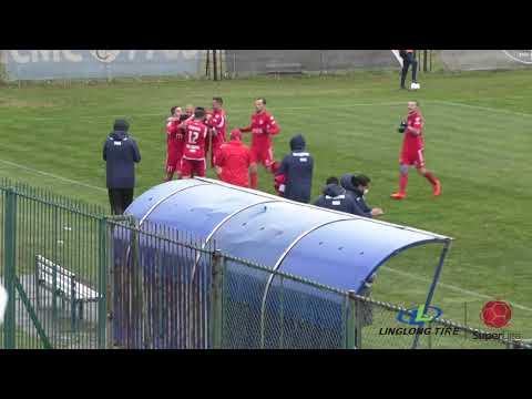 Rad Radnicki Nis Goals And Highlights