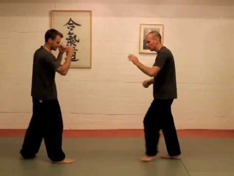 Gao Style Bagua 1st Line Houtian Applications