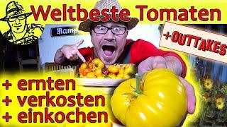 Die weltbeste Tomatensoße selber machen. Mit ganz neuer Methode zum haltbar machen: Pressure Canner!