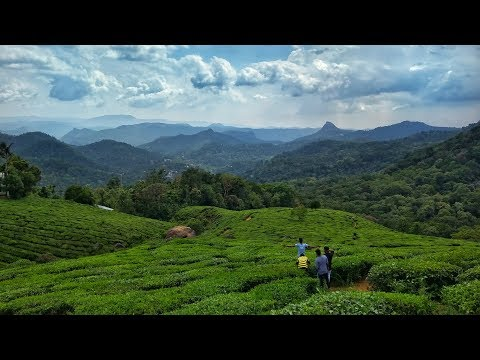 Journey from Cochin to Munnar