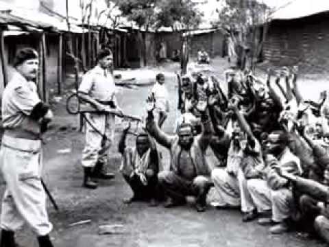 blacks in the holocaust - photo #15