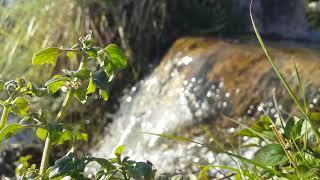 Звуки Природы Журчащая вода