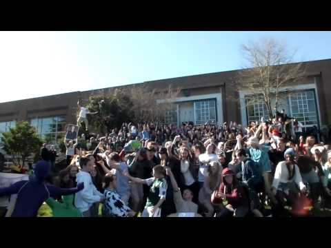 Harlem Shake West Linn High School