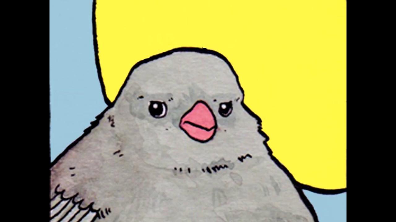 Annoyed Bird Pajaro Cantando Meme Template Plantilla Youtube