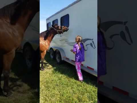 May 14, 2017 - Monroe County Fairgrounds, Waterloo - Annie Says Yes to a Treat (2)