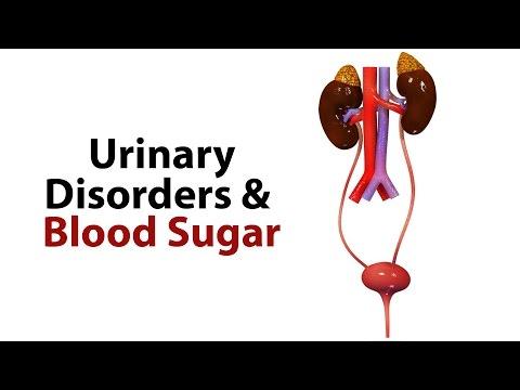 Urinary Disorders & Blood Sugar