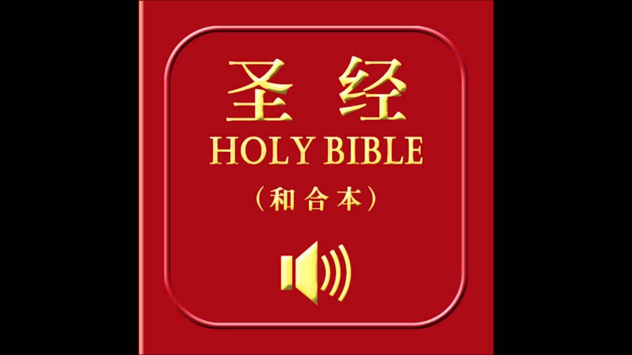和合本圣经• 约翰一书| Chinese Union Version Bible • 1 John