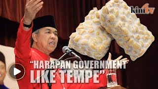Zahid Hamidi: Pakatan Harapan government like 'soybean cake'