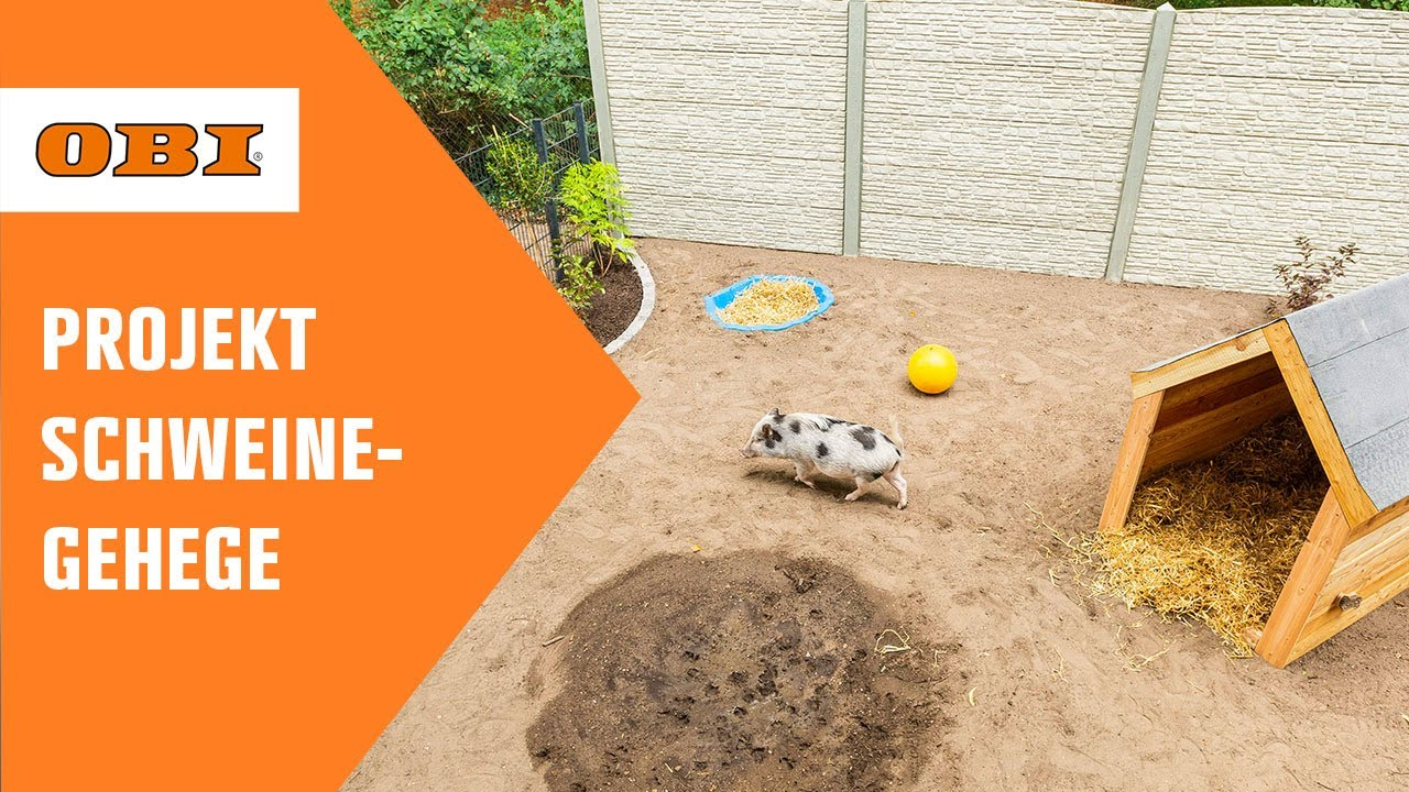 Download Wunschprojekt | Schweinegehege