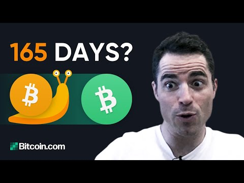 How Long Would It Take If Everyone Wanted To Move Their Bitcoin? - Roger Ver Explains