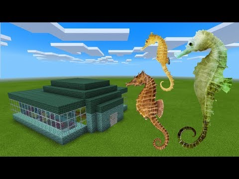 How To Make A SEAHORSE Farm In Minecraft PE