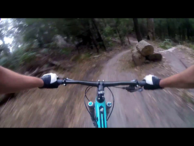 Blue Derby Tasmania - Flickity Sticks - Mountain Bike