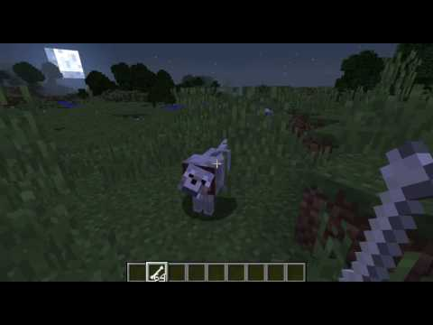How to Find, Tame and Breed wolves in Minecraft 1 10!
