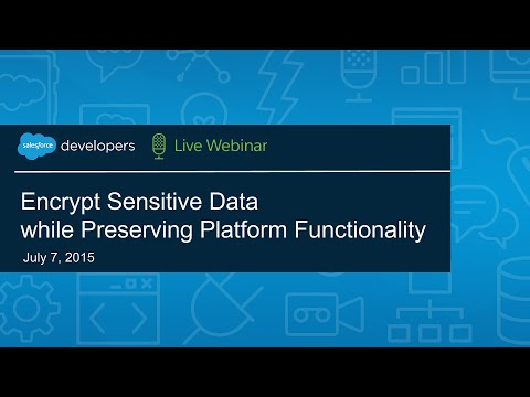 Encrypt Sensitive Data while Preserving Platform Functionality