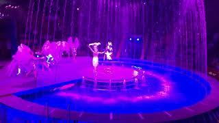 Цирк на воді, захоплююче шоу і феєричне шоу, circus on the water