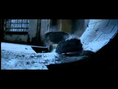 la roca muerte en las duchas youtube
