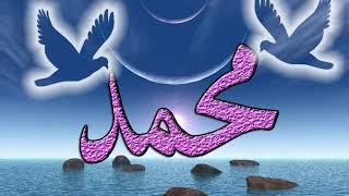 اغنية اسم النبى بصوت محمد حسنى