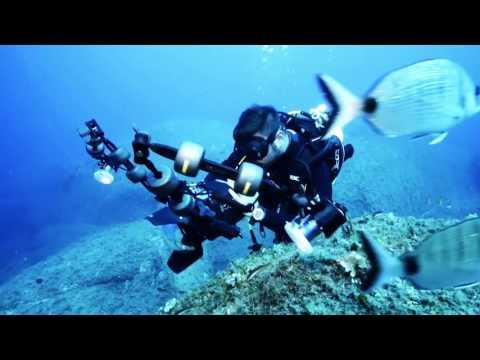 Underwater Photographer with Carmine Arrichiello   Phase One