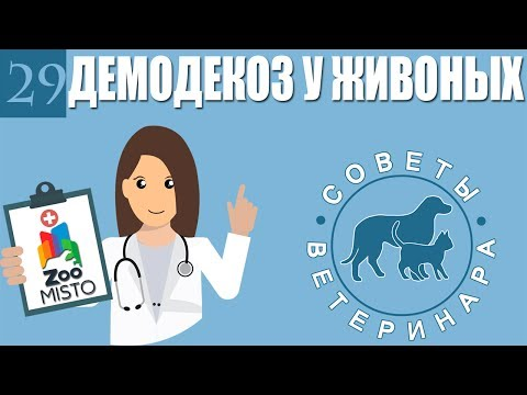 Демодекоз или подкожный клещь у животных | Что такое демодекоз ? | Советы Ветеринара
