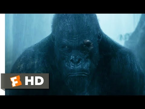 The Legend of Tarzan 2016  Rescuing Akut Scene 69  Movieclips