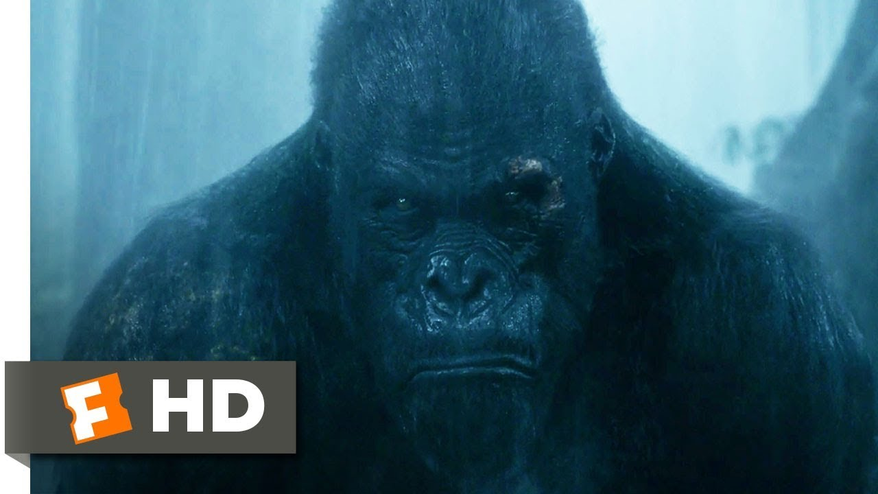 Download The Legend of Tarzan (2016) - Rescuing Akut Scene (6/9) | Movieclips