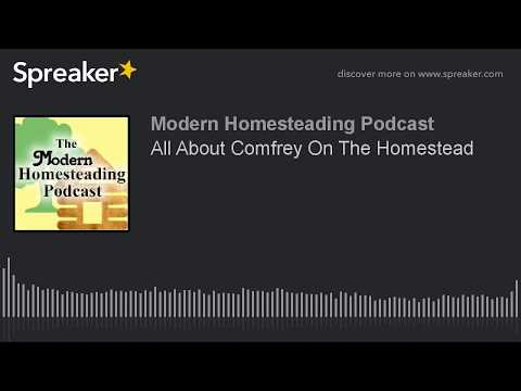 Podcast - All About Comfrey On The Homestead