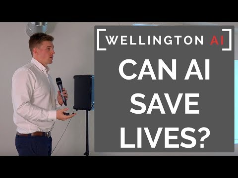 Wellington AI #1 | AI for Public Good by Mike Lovegrove and Nick Gerritsen