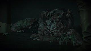 Ведьмак 3: Дикая Охота. Дикое сердце
