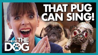 Victoria Shocked by Bizarre High Society 'Dog Party' | It's Me or The Dog