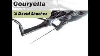 Gouryella Tribute Mix (by David Sánchez)